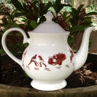 Unique British made Georgie Parker red bone china teapot.